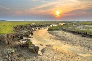 Estudios Hidrológicos y de Inundabilidad