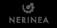 6- Nerinea