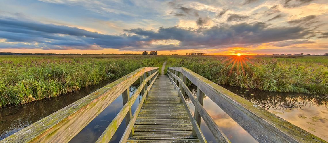 Wooden bridge on Cycling track through marshland at sunset in the Netherlands
